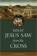 what jesus saw